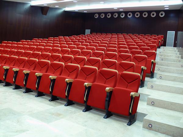 Salón de actos. Facultad de Empresa y Gestión Pública. Campus de Huesca